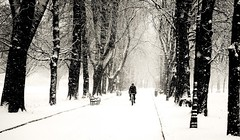 Bicycle Ride in Snow Fall..... (i.rashid007) Tags: park uk snow bicycle manchester freezing cycle snowfall stretford longfordpark