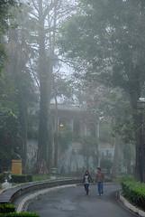 """Parque """"Los Berros"""" Xalapa. México (Ritter_Walder) Tags: mist cold méxico walking atardecer evening veracruz frío niebla passerby caminando xalapa transeúnte parquelosberros travelsofhomerodyssey"""