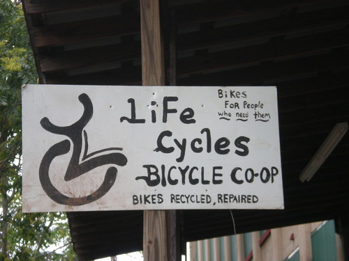 Life Cycles Entrance