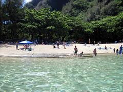 Day 2-26 (djfrantic) Tags: summer vacation fish beach island hawaii underwater diving snorkeling kauai fourthofjuly kee gardenisland keebeach