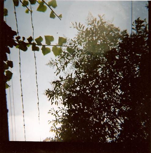 Antes del cielo, un alambre de púas