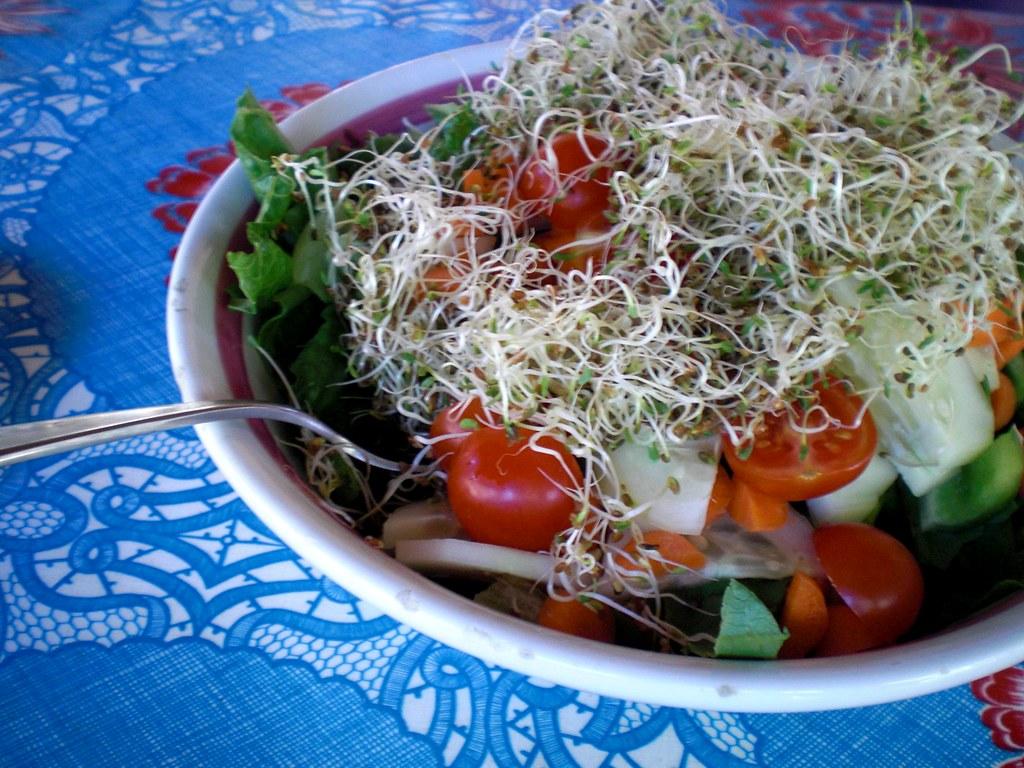 zdrowe danie zdrowe odżywianie kiełki - pokarm życia