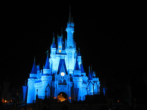 walt disney world castle pictures. Night, Walt Disney World