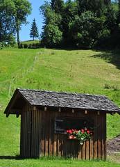 Summer days......in Furx, Austria (sharon.schneider) Tags: nature vorarlberg furx trekkinghof