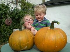 Pumpkins again