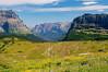 Logan Pass Meadow Looking East 3