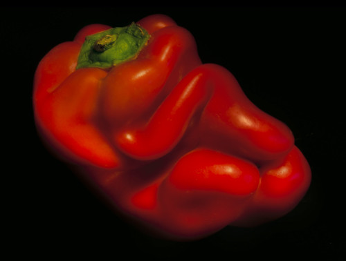 Red Pepper 1