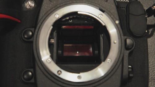 Nikon D300s 7 FPS