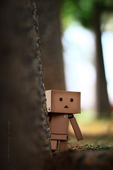 sanfrancisco toy toys box figure sensational figurine sindy kaiyodo yotsuba danbo revoltech danboard 紙箱人 阿楞 amazoncomjp
