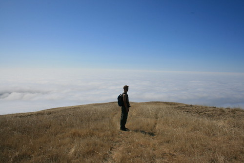 Romy Above the Clouds