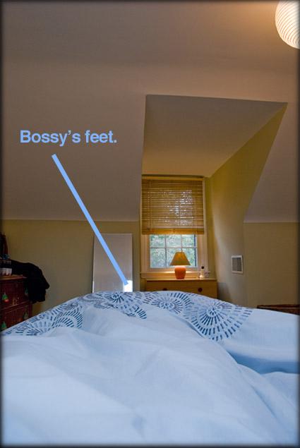 iambossy-georgia-getz-in-bed