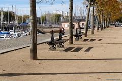 L'automne  Lorient (marinelorient .....) Tags: france automne soleil bretagne des arbres morbihan quai lorient bancs indes
