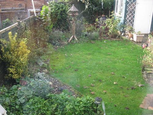 Lower lawn 01/11/09