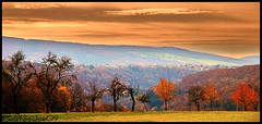 ~~Paysage du Doubs~~ (Jolisa) Tags: autumn friends fall nature automne landscape nikon village paysage franchecomt collines doubs blamont lomont naturallymagnificient croquenature