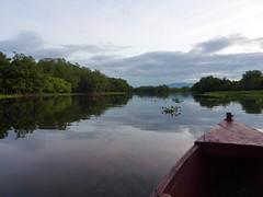 Starting the mangroves tour.