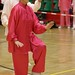 Dutch Tai Chi Festival-157