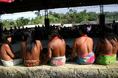 The People We Help - Internally Displaced Persons (UNHCR) Tags: latinamerica southamerica colombia conflict indians protection embera choco unhcr indigenous displacement idps displacedperson ethnicgroup baudo internallydisplaced indigenousgroup unrefugeeagency internalviolence chocoregion