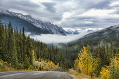 Maligne Lake Road, Alberta (sminky_pinky100 (In and Out)) Tags: travel autumn canada mountains tourism beautiful landscape rockies jasper view alberta aspens peaks pinetrees lowcloud omot malignelakeroad exploreunexplored amazingalberta absolutelystunningscapes vosplusbellesphotos earthnaturelife