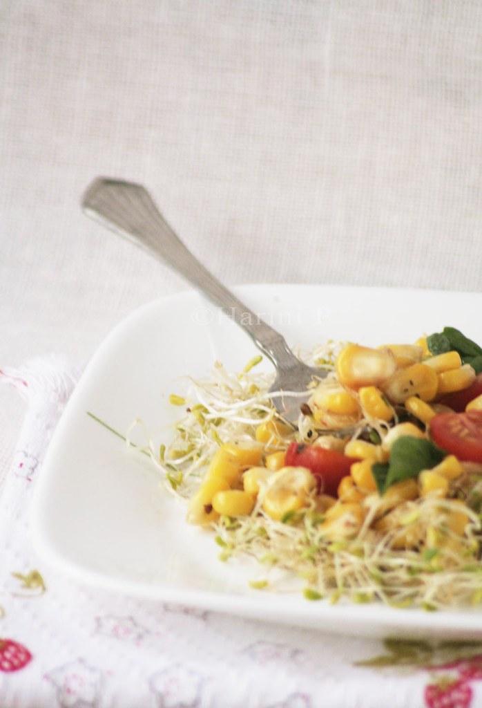 Corn and alfalfa sprouts salad