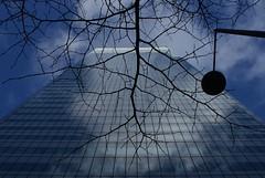 Canary Wharf, Tree & Building (mintcake669) Tags: sky cloud building tree london glass canarywharf hsbc