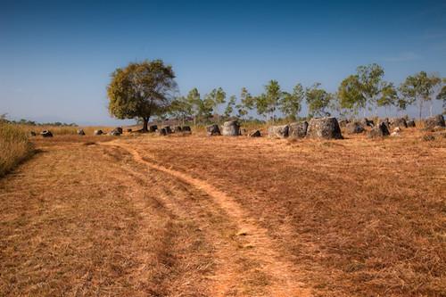 Field of Jars