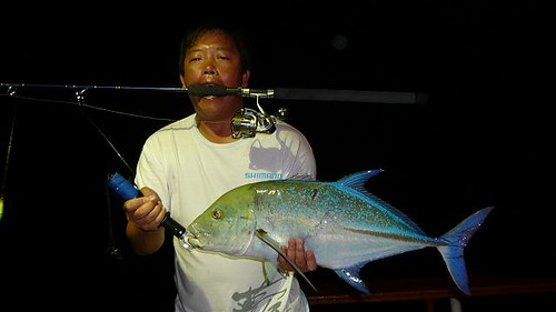 Bluefin trevally on lite jig