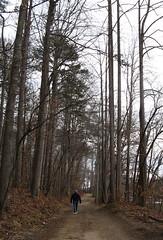 Salem Lake Trail