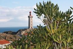 Cap Bear (Port-Vendres) (Magda i Carles) Tags: lighthouse france faro francia far
