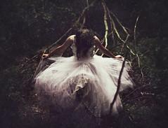[フリー画像] 人物, 女性, 人と風景, 森林, ドレス, 201106110500