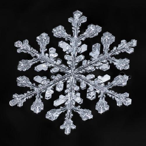 Snowflake-a-Day #55