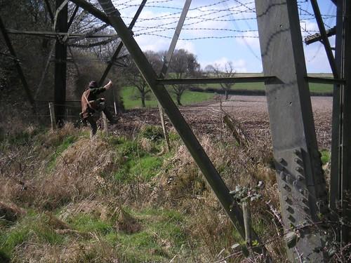 smal-ed-pheasant-post-petersfield -lapwing-tumble-bird