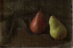 Pear Songs