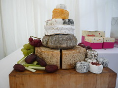 The cake of cheese