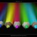 ...blend in! by eRiz SLR