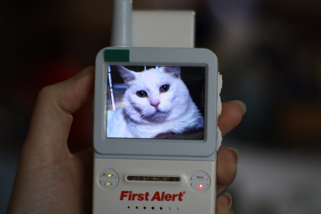 Baby Monitor Test Subject