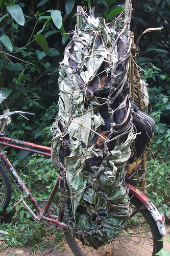 bikeload of bushmeat