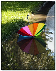 Umbrella (Lisa-S) Tags: summer ontario canada reflection umbrella puddle rainbow lisas explore allrightsreserved brampton invited 4604 colorphotoaward theunforgettablepictures getty2009 copyrightlisastokes getty20091008