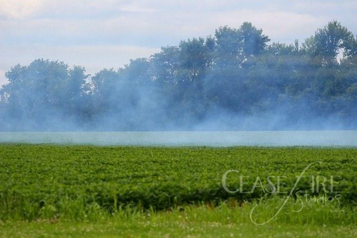 08-31-crop1