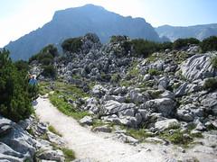 IMG_8597 (steveandmadiha) Tags: germany berchtesgaden eaglesnest