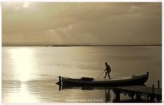 Déjame esta noche soñar..... (María04) Tags: sunset valencia contraluz atardecer golden muelle barca olympus embarcadero oro albufera albuferadevalencia olympuse520 travelsofhomerodyssey