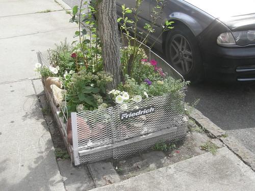 street plants