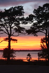 NC - Carolina Beach State Park - A Sunset View (scott185 (the original)) Tags: trees sunset nc northcarolina carolinabeach capefearriver carolinabeachstatepark newhanovercounty flickrgolfclub
