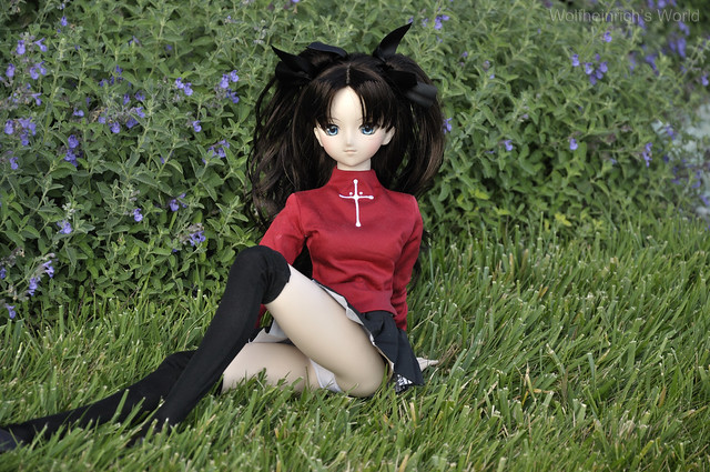 Dollfie Dream Rin 遠坂 凛 Panchira