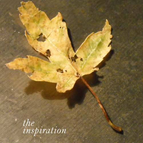 Fallinspiration