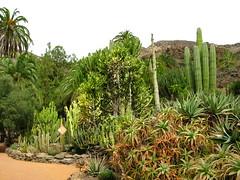 Palmitos Park-9 Photo