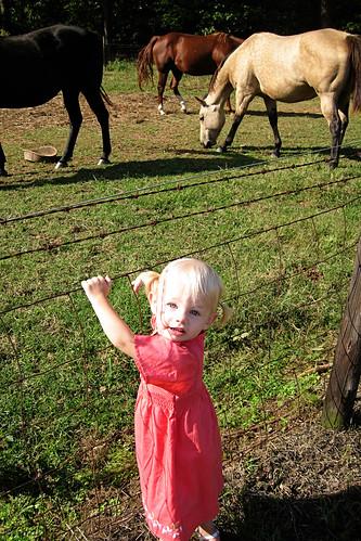 Farm-Babies-133