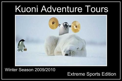 penguin-polar-bear-symbols