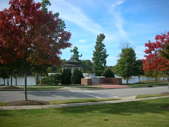 Cary NC Carpener Village homes for sale - Linda Lohman