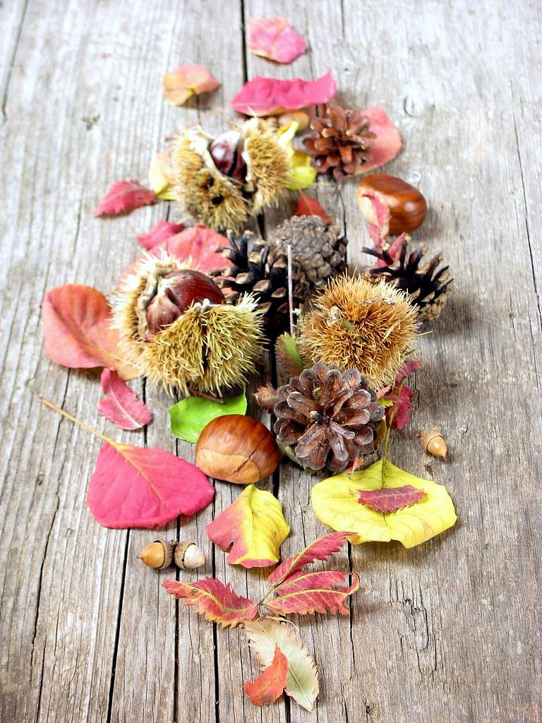 Autunno (e i suoi frutti)