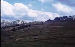 Scan10378 (lucky37it) Tags: e alpi dolomiti cervino